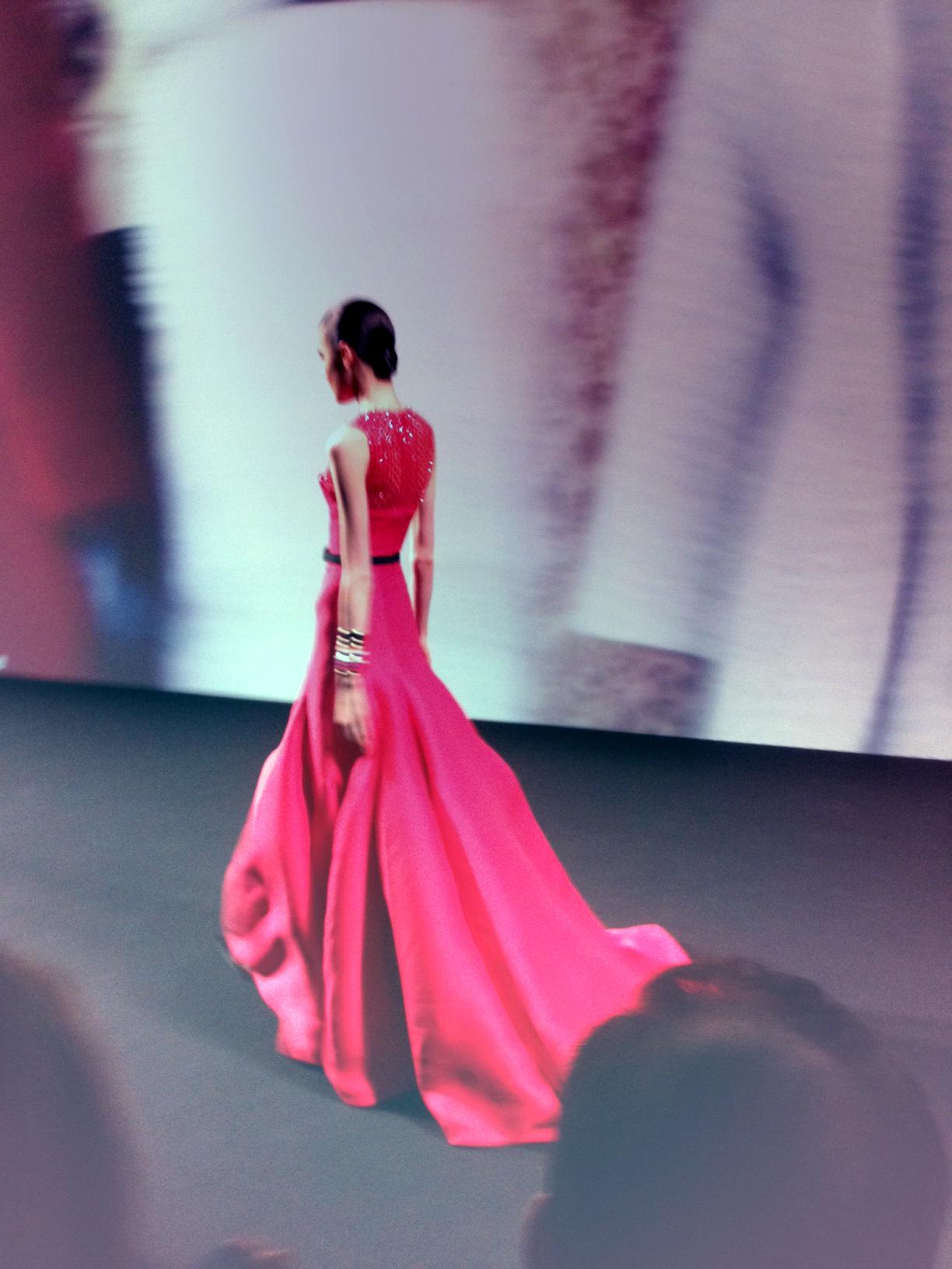 Dior Haute Couture Fall-Winter 2013/2014