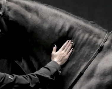 hermes black horse fashion